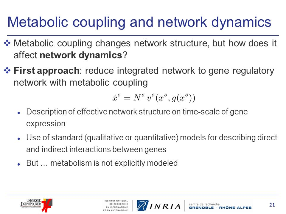 Metabolic coupling and network dynamics vMetabolic coupling changes network structure, but how does it affect network dynamics? vFirst approach: reduc