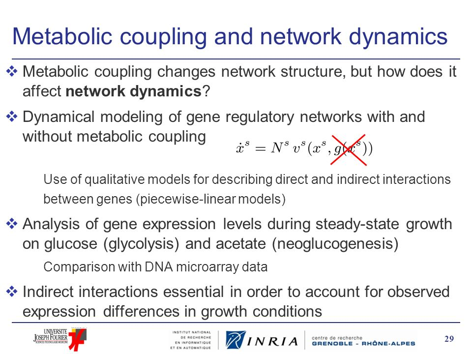 Metabolic coupling and network dynamics vMetabolic coupling changes network structure, but how does it affect network dynamics? vDynamical modeling of