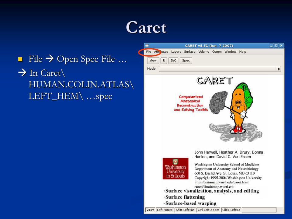 Caret File Open Spec File … File Open Spec File … In Caret\ HUMAN.COLIN.ATLAS\ LEFT_HEM\ …spec In Caret\ HUMAN.COLIN.ATLAS\ LEFT_HEM\ …spec