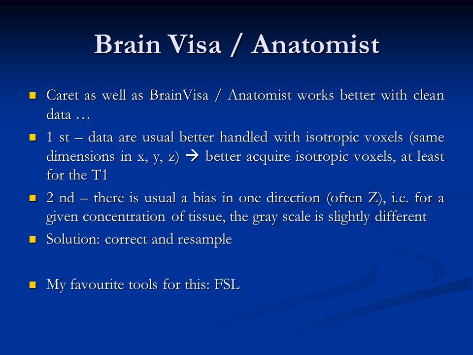 Brain Visa / Anatomist Caret as well as BrainVisa / Anatomist works better with clean data … Caret as well as BrainVisa / Anatomist works better with