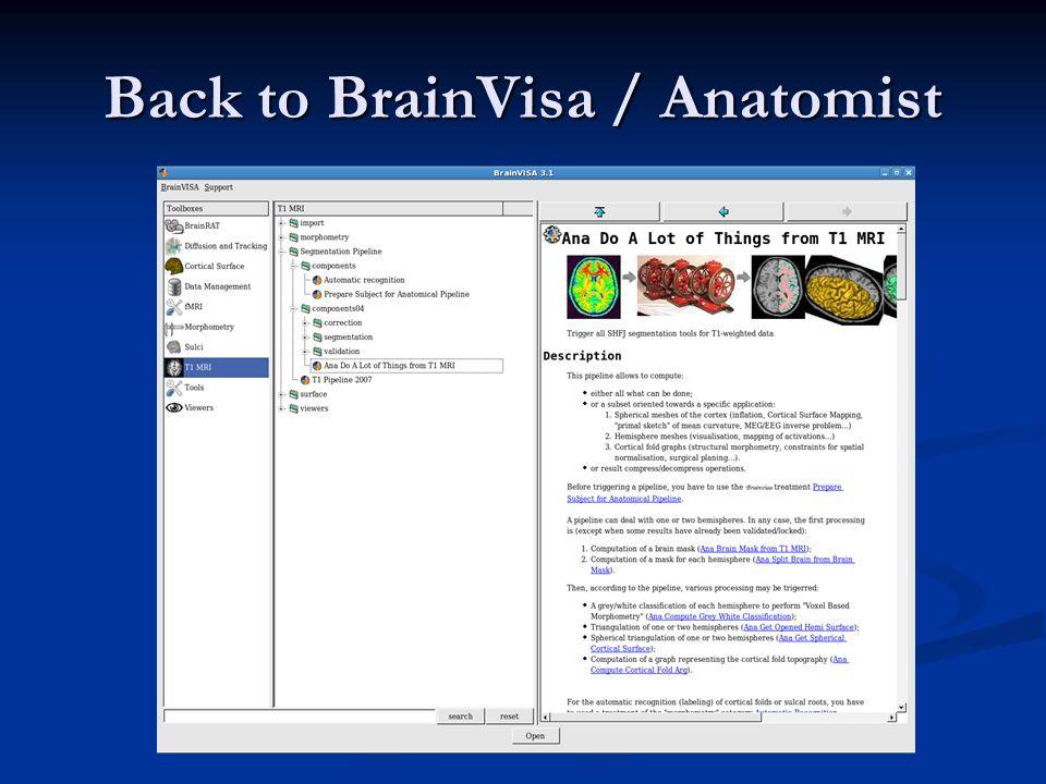 Back to BrainVisa / Anatomist