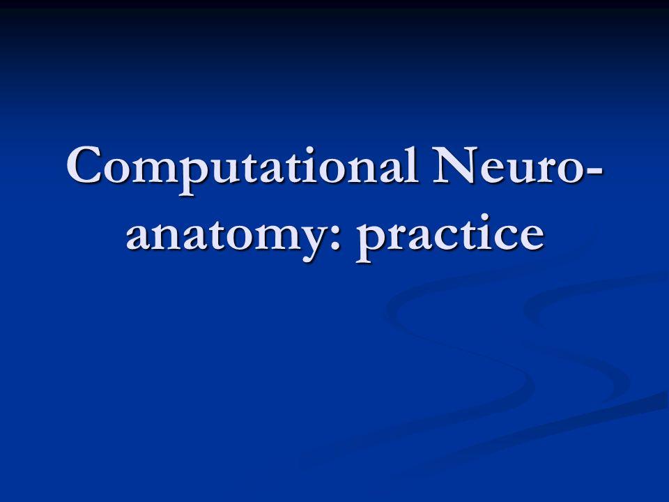 Computational Neuro- anatomy: practice