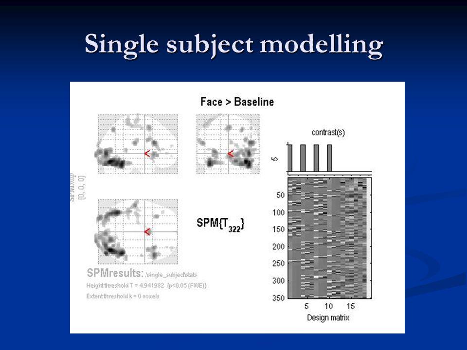 Single subject modelling