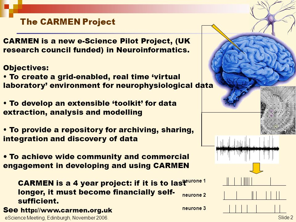 eScience Meeting, Edinburgh, November 2006. Slide 2 CARMEN is a new e-Science Pilot Project, (UK research council funded) in Neuroinformatics. Objecti