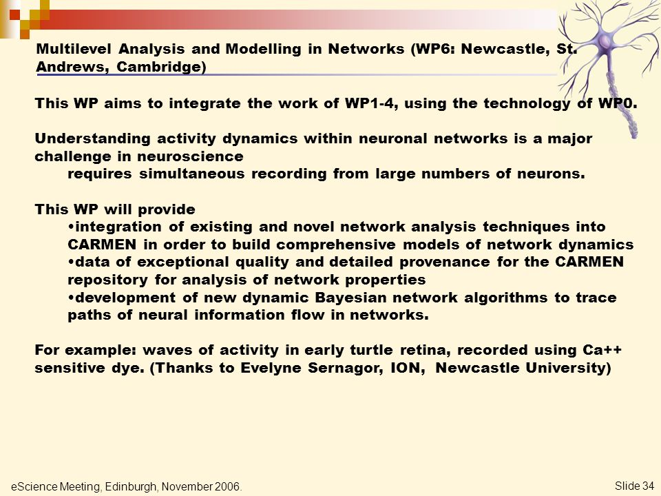 eScience Meeting, Edinburgh, November 2006. Slide 34 Multilevel Analysis and Modelling in Networks (WP6: Newcastle, St. Andrews, Cambridge) This WP ai