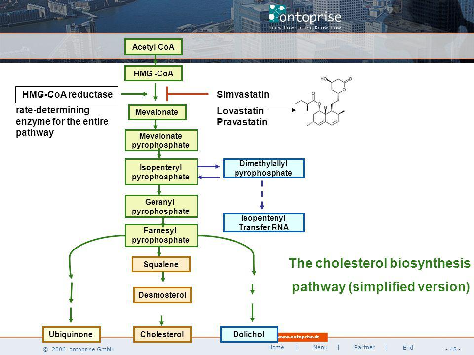 www.ontoprise.de © 2006 ontoprise GmbH Home - 48 - | Menu | Partner | End The cholesterol biosynthesis pathway (simplified version) Dolichol Acetyl CoA HMG -CoA Mevalonate pyrophosphate Isopenteryl pyrophosphate Geranyl pyrophosphate Farnesyl pyrophosphate Cholesterol Dimethylallyl pyrophosphate Isopentenyl Transfer RNA Squalene Ubiquinone HMG-CoA reductase Simvastatin Lovastatin Pravastatin rate-determining enzyme for the entire pathway Desmosterol