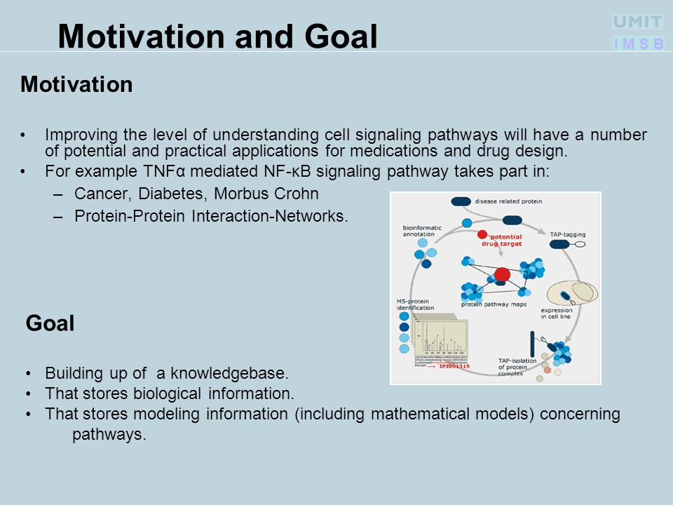 I M S B Motivation and Goal Motivation Improving the level of understanding cell signaling pathways will have a number of potential and practical applications for medications and drug design.