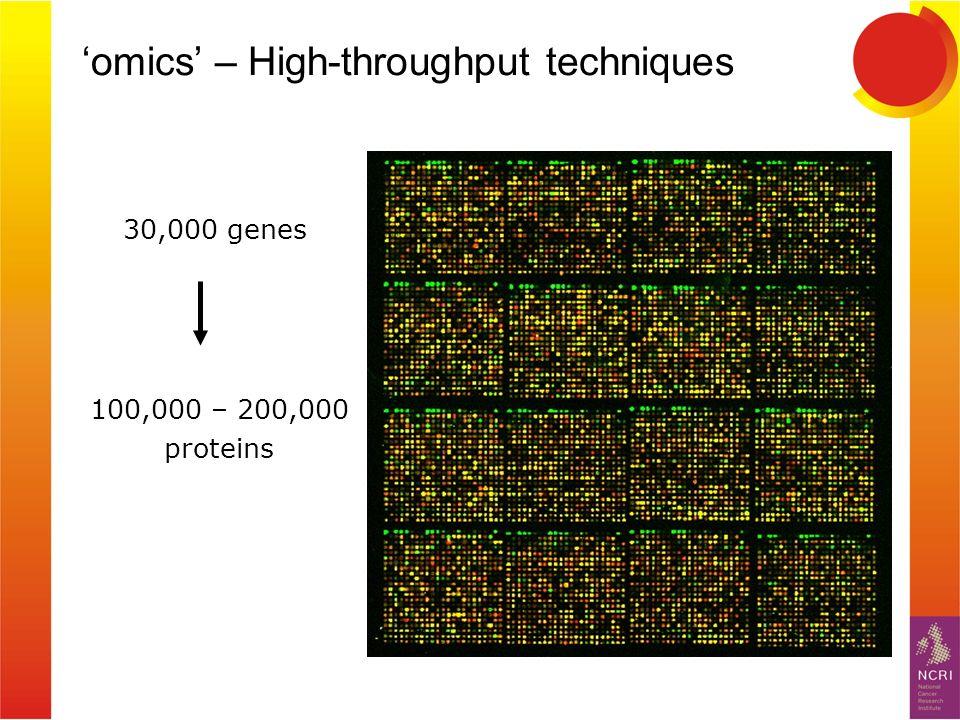 omics – High-throughput techniques 30,000 genes 100,000 – 200,000 proteins