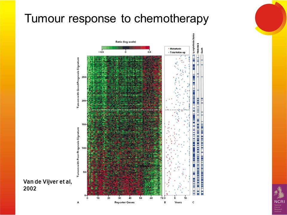 Van de Vijver et al, 2002 Tumour response to chemotherapy