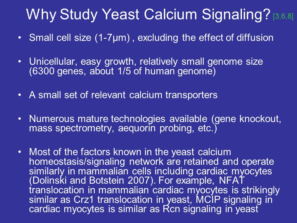 Why Study Yeast Calcium Signaling.