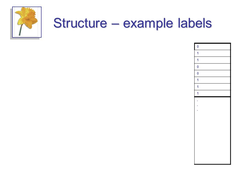 Structure – example labels complex Array complex float byte bit0 1 1 0 0 1 1 1 byte............