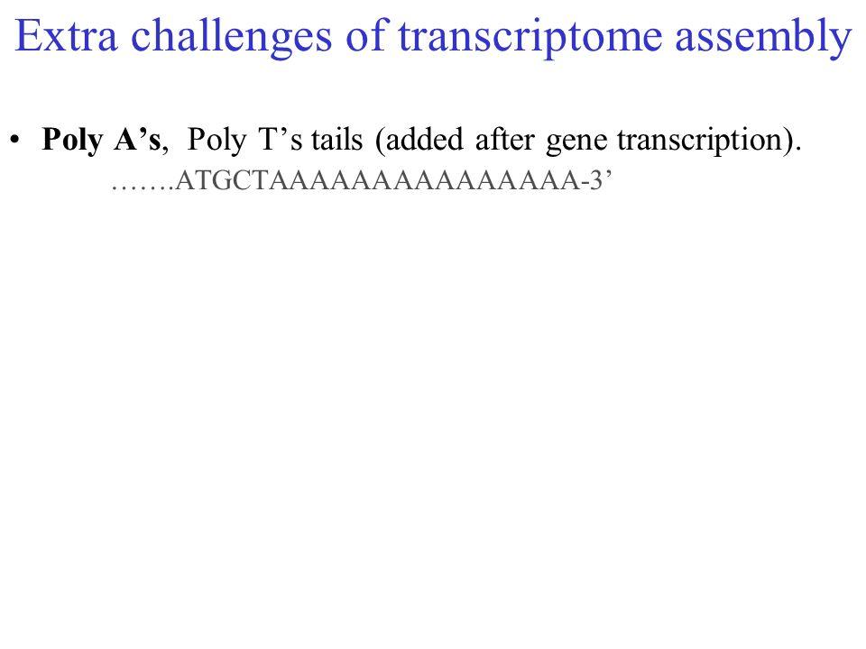 Extra challenges of transcriptome assembly Poly As, Poly Ts tails (added after gene transcription). …….ATGCTAAAAAAAAAAAAAAA-3
