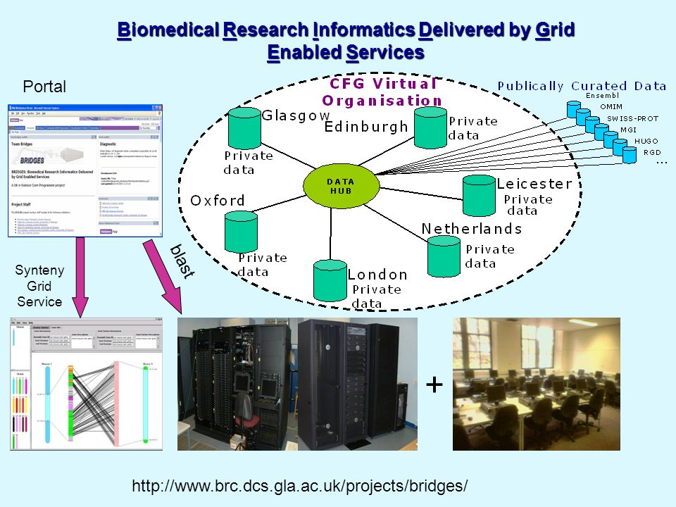 TICER Summer School, August 24th 200628 Grids In Use: E-Science Examples Data sharing and integration Life sciences, sharing standard data-sets, combining collaborative data-sets Medical informatics, integrating hospital information systems for better care and better science Sciences, high-energy physics Data sharing and integration Life sciences, sharing standard data-sets, combining collaborative data-sets Medical informatics, integrating hospital information systems for better care and better science Sciences, high-energy physics Capability computing Life sciences, molecular modeling, tomography Engineering, materials science Sciences, astronomy, physics Capability computing Life sciences, molecular modeling, tomography Engineering, materials science Sciences, astronomy, physics High-throughput, capacity computing for Life sciences: BLAST, CHARMM, drug screening Engineering: aircraft design, materials, biomedical Sciences: high-energy physics, economic modeling High-throughput, capacity computing for Life sciences: BLAST, CHARMM, drug screening Engineering: aircraft design, materials, biomedical Sciences: high-energy physics, economic modeling Simulation-based science and engineering Earthquake simulation Simulation-based science and engineering Earthquake simulation Source: Hiro Kishimoto GGF17 Keynote May 2006
