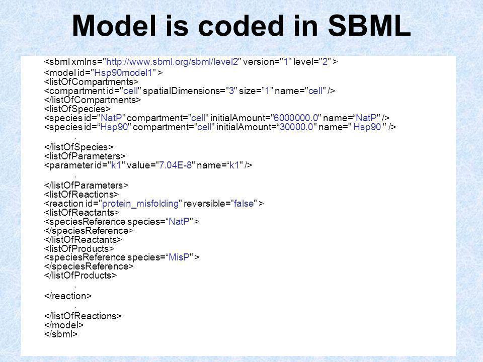 Model is coded in SBML.