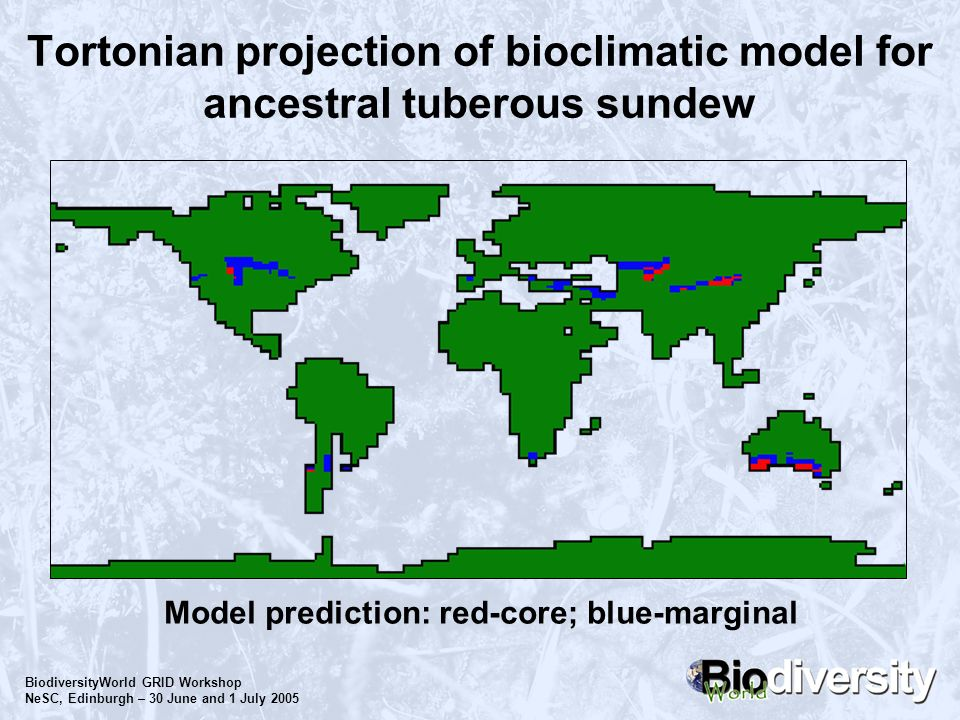 BiodiversityWorld GRID Workshop NeSC, Edinburgh – 30 June and 1 July 2005 Tortonian projection of bioclimatic model for ancestral tuberous sundew Mode