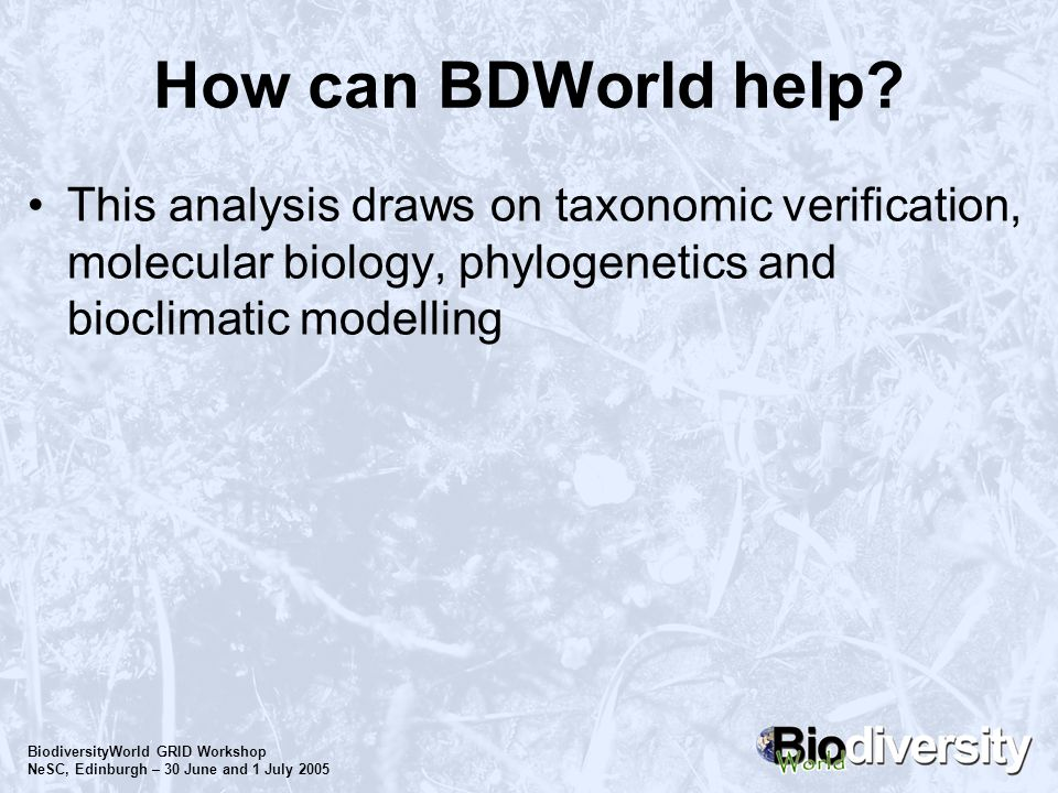 BiodiversityWorld GRID Workshop NeSC, Edinburgh – 30 June and 1 July 2005 How can BDWorld help? This analysis draws on taxonomic verification, molecul