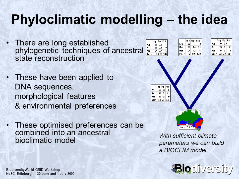 BiodiversityWorld GRID Workshop NeSC, Edinburgh – 30 June and 1 July 2005 Phyloclimatic modelling – the idea There are long established phylogenetic t