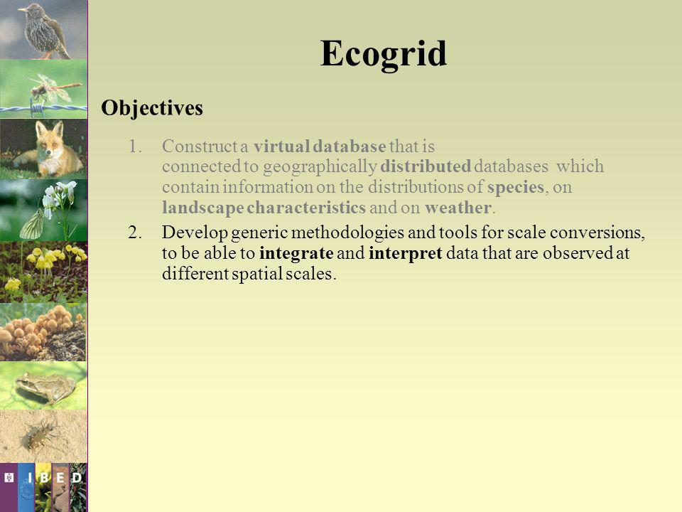 Ecogrid Objectives 1.Construct a virtual database that is connected to geographically distributed databases which contain information on the distributions of species, on landscape characteristics and on weather.