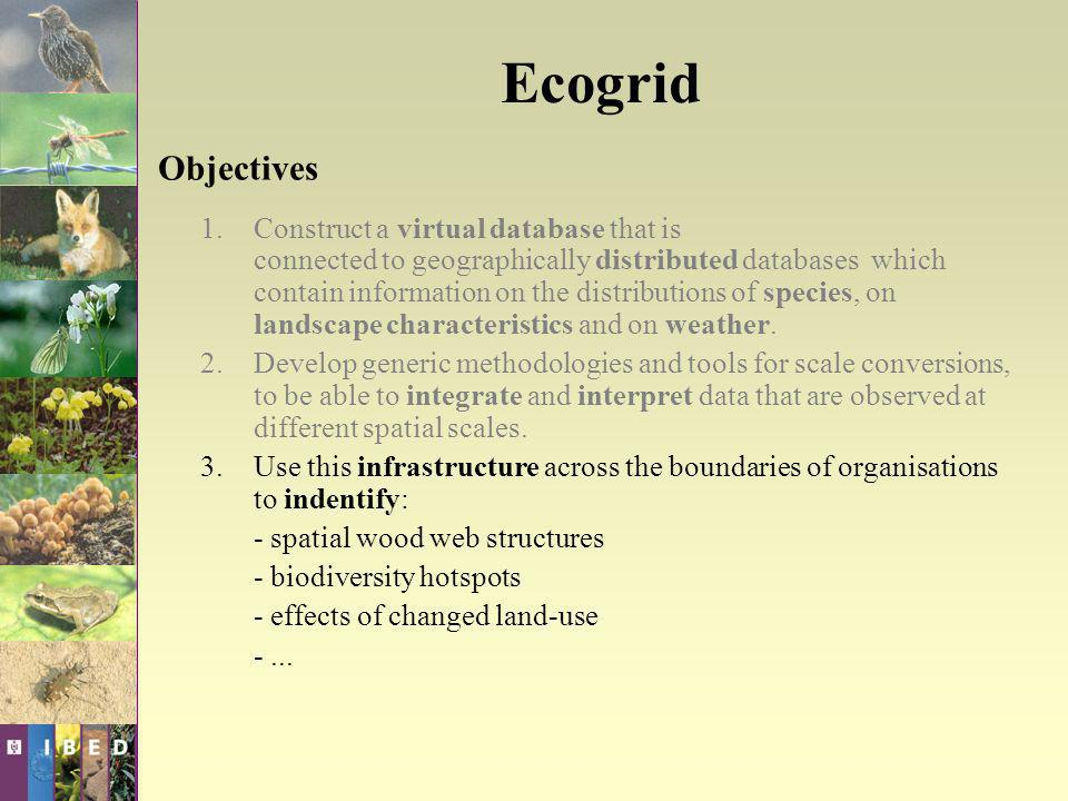 Ecogrid Objectives 1.Construct a virtual database that is connected to geographically distributed databases which contain information on the distribut