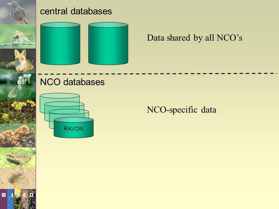central databases NCO databases Data shared by all NCOs NCO-specific data RAVON