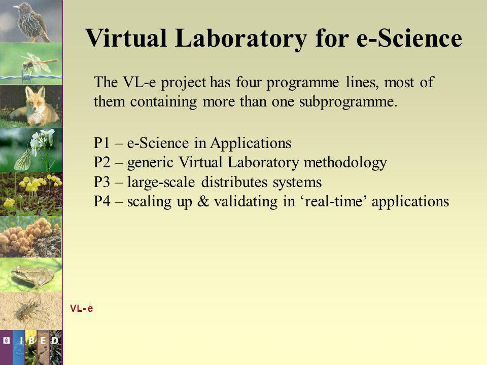 Virtual Laboratory for e-Science P1 – e-Science in Applications SP1 – Data Intensive Science SP2 – Food Informatics SP3 – Medical Diagnosis & Imaging SP4 – Biodiversity SP5 – Bioinformatics ASP SP6 – The Dutch Telescience Laboratory VL- e e-Science in Applications Research of the P1 line is carried out within the following subprogrammes: