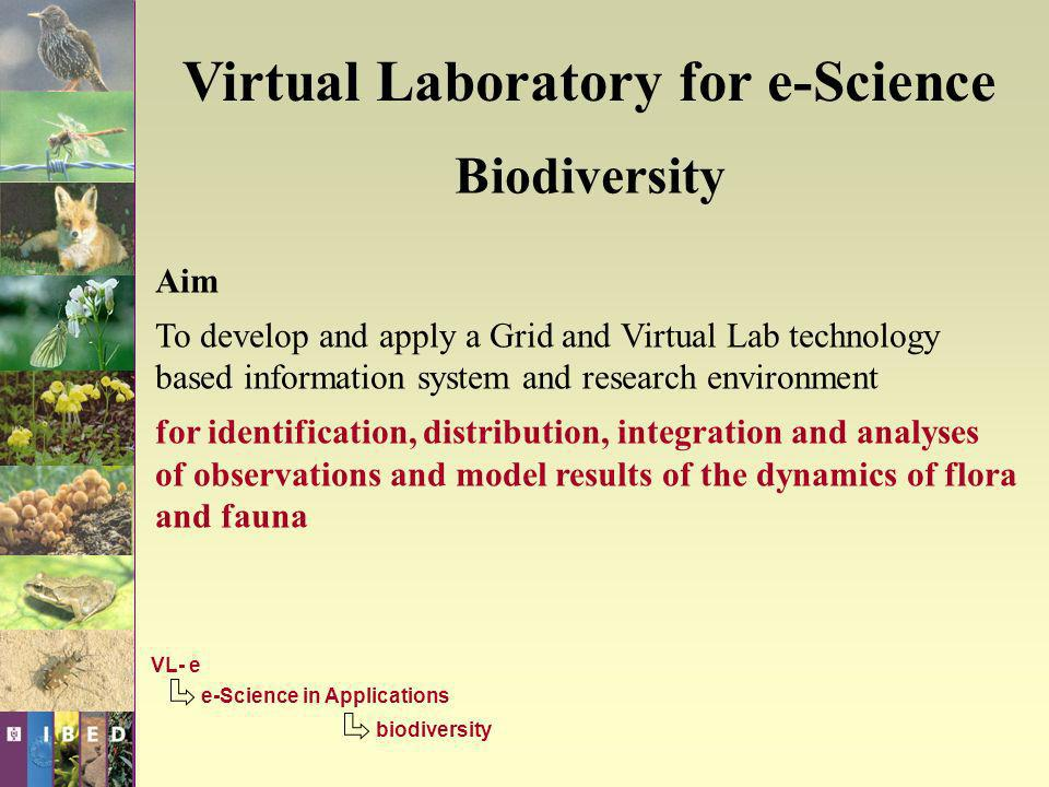 Virtual Laboratory for e-Science Biodiversity Partners: CBPG –Computational Bio- and Physical Geography (IBED – Institute for Biodiversity and Ecosystem Dynamics) (UvA – Universiteit van Amsterdam) RNLAF –Royal Netherlands Airforce VOFF –Association for Research of Flora & Fauna And co-operation with other programme lines, especially subprogrammes of P2 (generic Virtual Laboratory methodology) VL- e e-Science in Applications biodiversity CBPG