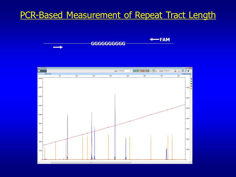 PCR-Based Measurement of Repeat Tract Length GGGGGGGGGG FAM