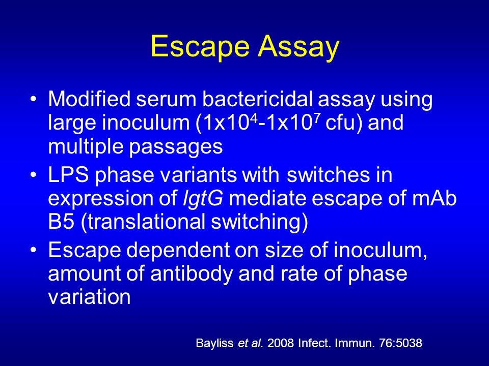 Escape Assay Modified serum bactericidal assay using large inoculum (1x10 4 -1x10 7 cfu) and multiple passages LPS phase variants with switches in expression of lgtG mediate escape of mAb B5 (translational switching) Escape dependent on size of inoculum, amount of antibody and rate of phase variation Bayliss et al.