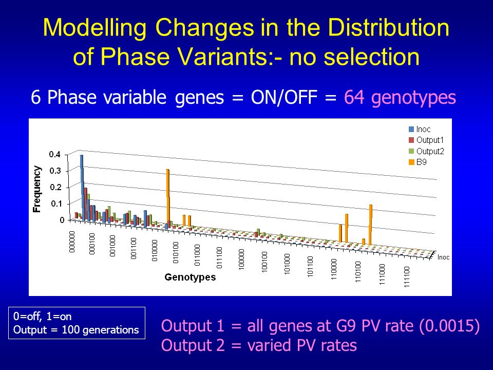 Modelling Changes in the Distribution of Phase Variants:- no selection 6 Phase variable genes = ON/OFF = 64 genotypes Output 1 = all genes at G9 PV ra