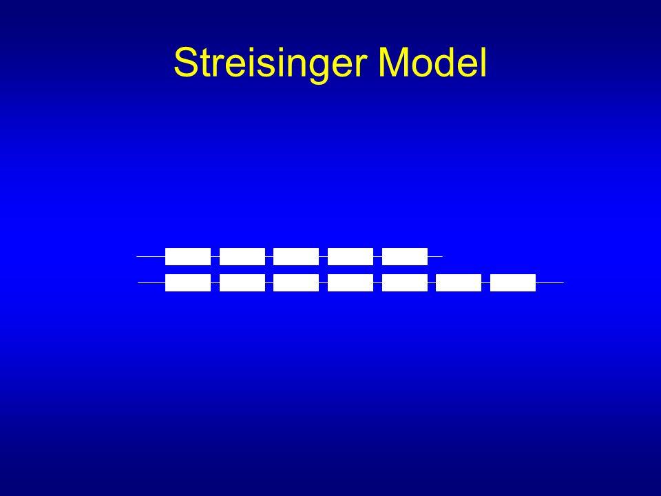 Streisinger Model