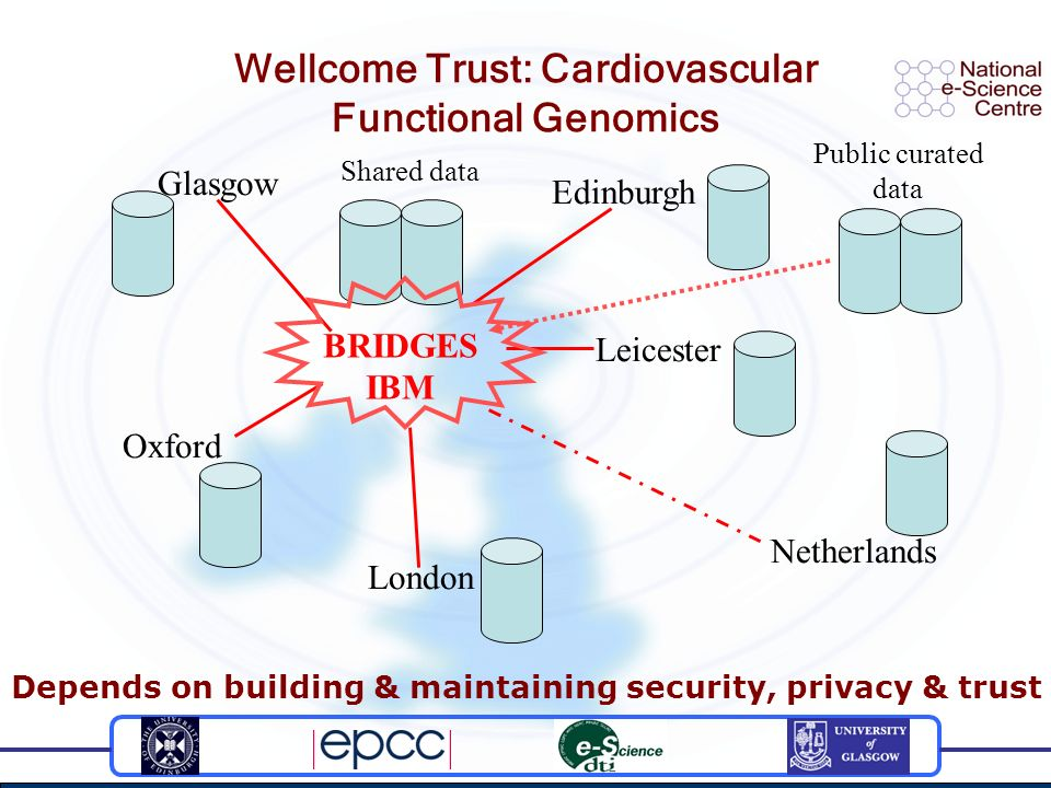 Wellcome Trust: Cardiovascular Functional Genomics Glasgow Edinburgh Leicester Oxford London Netherlands Shared data Public curated data BRIDGES IBM D