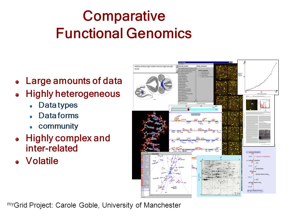 Comparative Functional Genomics Large amounts of data Highly heterogeneous Data types Data forms community Highly complex and inter-related Volatile m