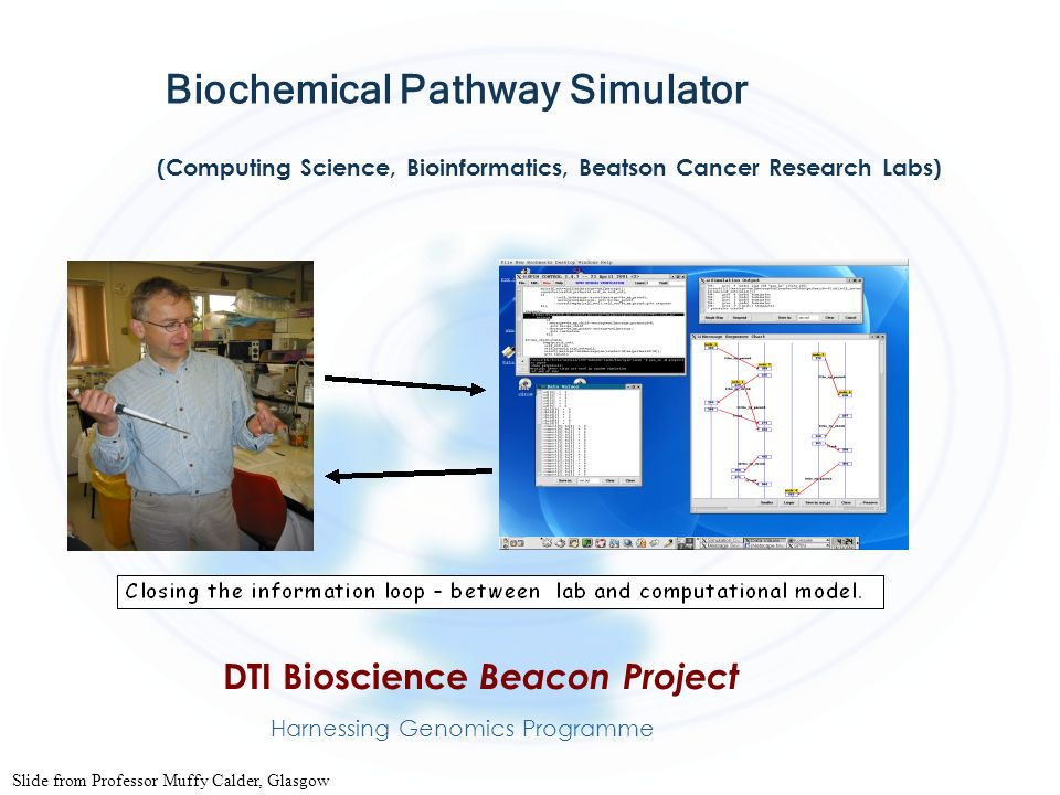 Biochemical Pathway Simulator (Computing Science, Bioinformatics, Beatson Cancer Research Labs) DTI Bioscience Beacon Project Harnessing Genomics Prog