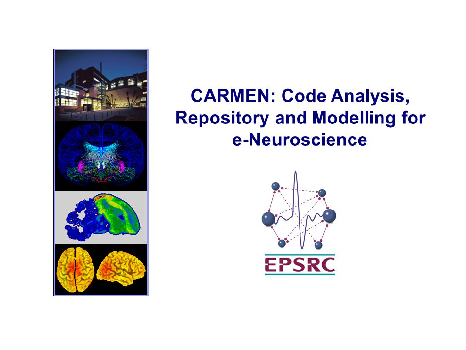 CARMEN: Code Analysis, Repository and Modelling for e-Neuroscience