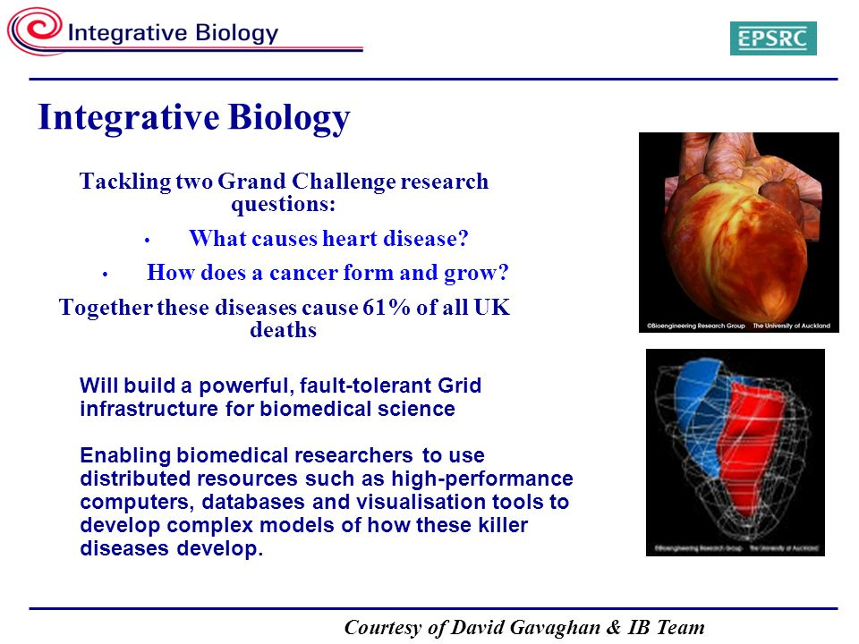 Courtesy of David Gavaghan & IB Team Integrative Biology Tackling two Grand Challenge research questions: What causes heart disease? How does a cancer