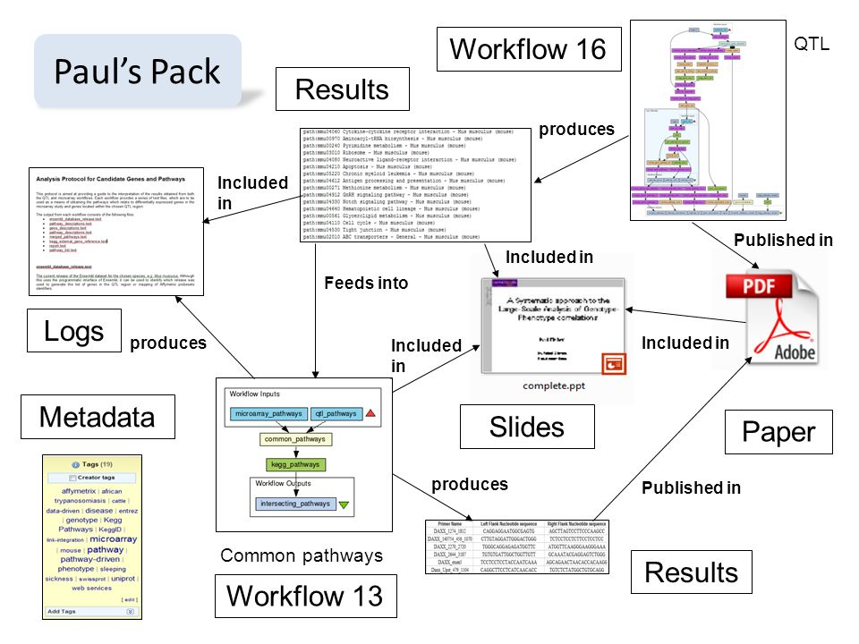 Results Logs Results Metadata Paper Slides Feeds into produces Included in produces Published in produces Included in Published in Workflow 16 Workflow 13 Common pathways QTL Pauls Pack