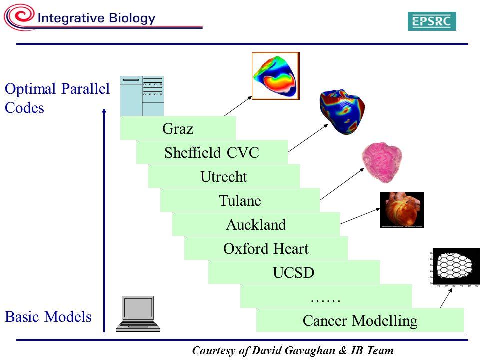 Courtesy of David Gavaghan & IB Team Basic Models Optimal Parallel Codes Cancer Modelling Oxford Heart UCSD …… Tulane Auckland Utrecht Sheffield CVC Graz