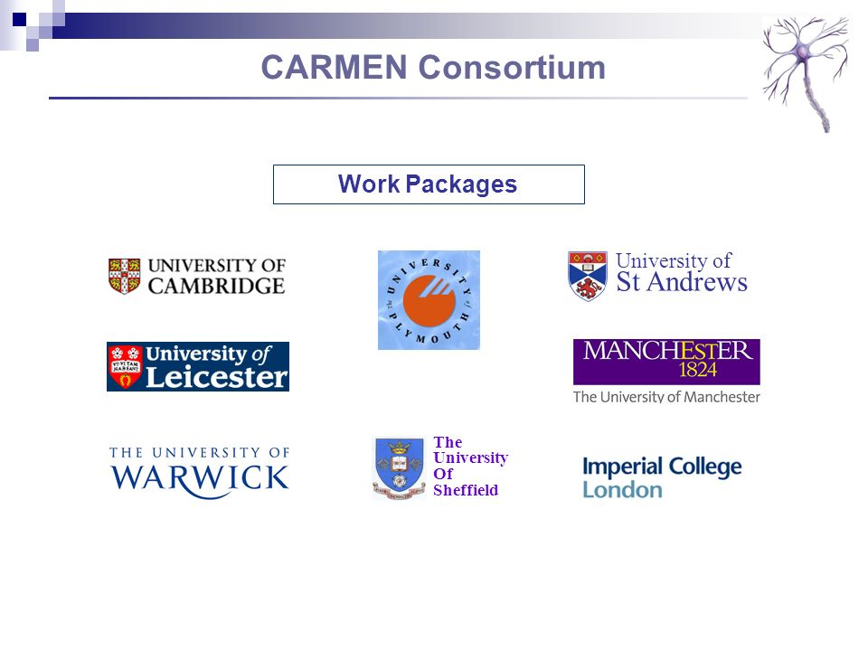 CARMEN Consortium Work Packages University of St Andrews The University Of Sheffield