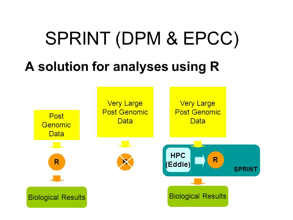 SPRINT Post Genomic Data R Biological Results Very Large Post Genomic Data R R Biological Results HPC (Eddie) A solution for analyses using R SPRINT (DPM & EPCC))