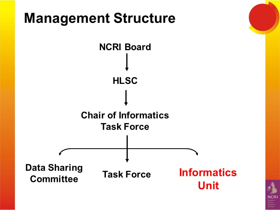 Management Structure NCRI Board HLSC Task Force Informatics Unit Chair of Informatics Task Force Data Sharing Committee