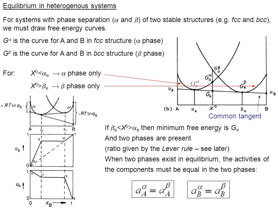 Equilibrium in heterogenous systems For systems with phase separation ( and ) of two stable structures (e.g. fcc and bcc), we must draw free energy cu