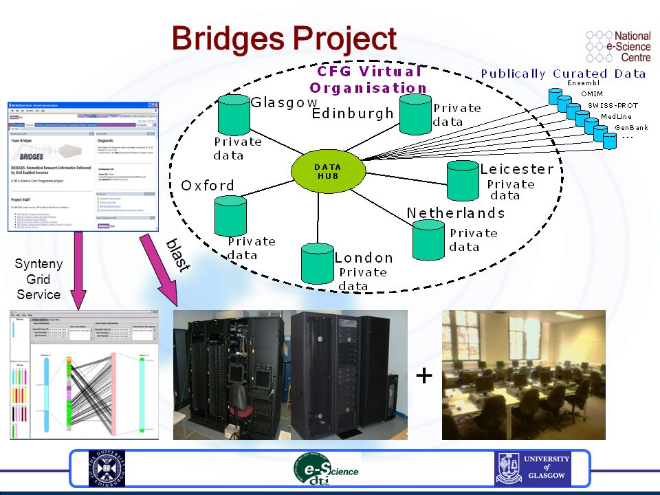 Bridges Project Synteny Grid Service blast +