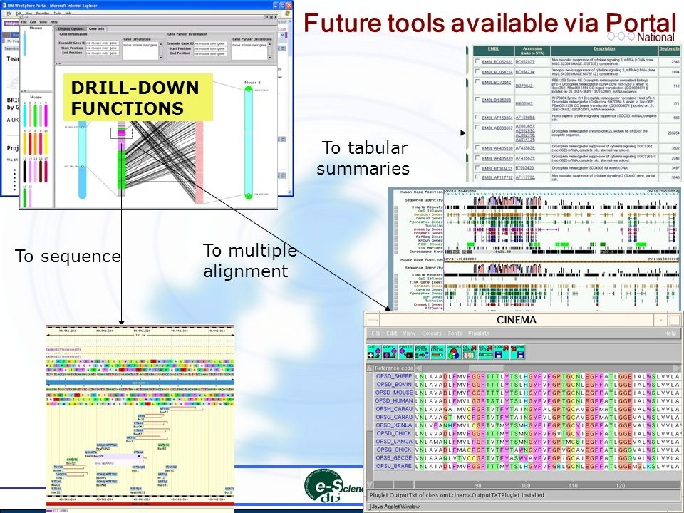 To sequence To multiple alignment To tabular summaries DRILL-DOWN FUNCTIONS Future tools available via Portal
