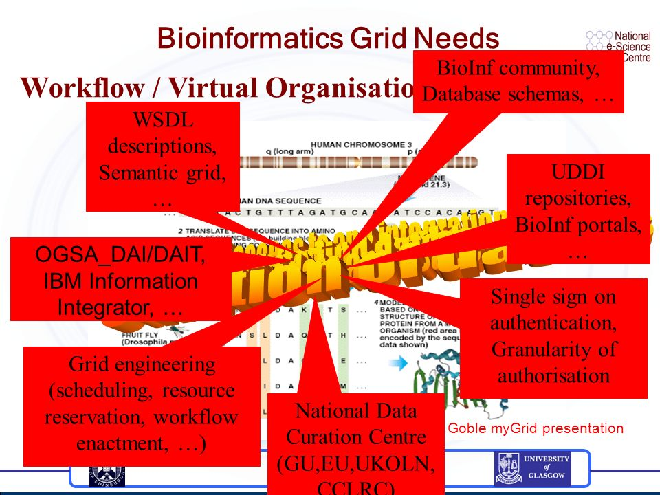 Bioinformatics Grid Needs Taken from C.