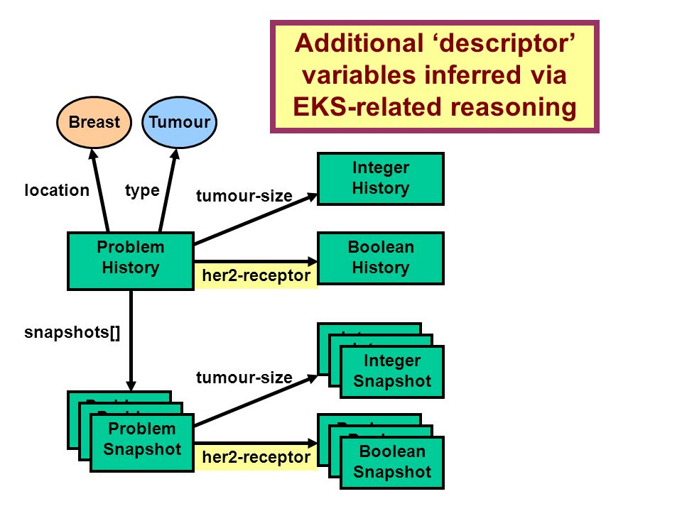 her2-receptor Breast Problem History snapshots[] Problem Snapshot locationtype Integer Snapshot Integer History tumour-size Integer Snapshot Integer Snapshot tumour-size Tumour Problem Snapshot Problem Snapshot Boolean Snapshot Boolean Snapshot Boolean Snapshot Boolean History Additional descriptor variables inferred via EKS-related reasoning