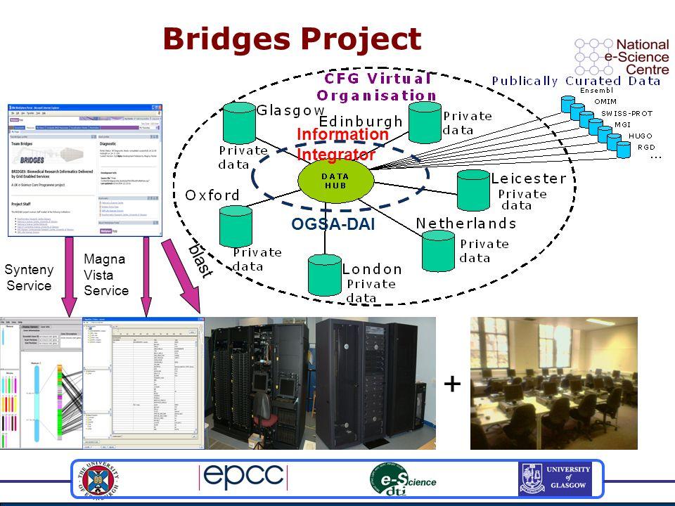 Bridges Project Synteny Service blast + Information Integrator OGSA-DAI Magna Vista Service