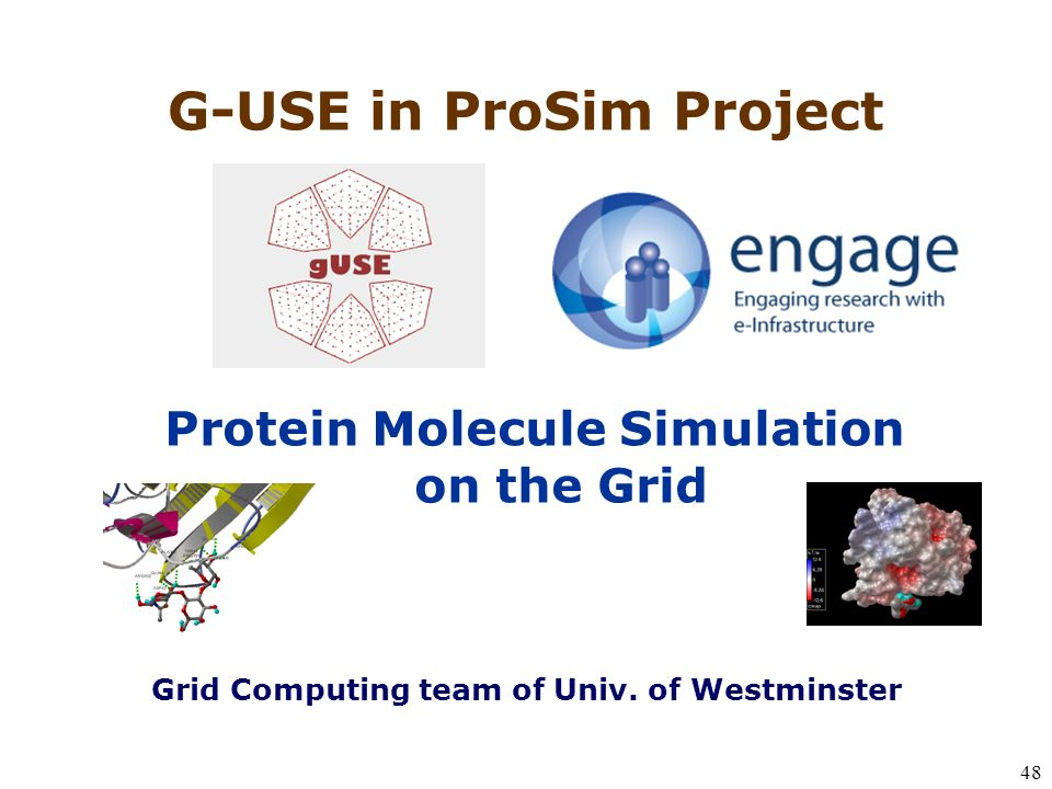 48 Protein Molecule Simulation on the Grid G-USE in ProSim Project Grid Computing team of Univ.