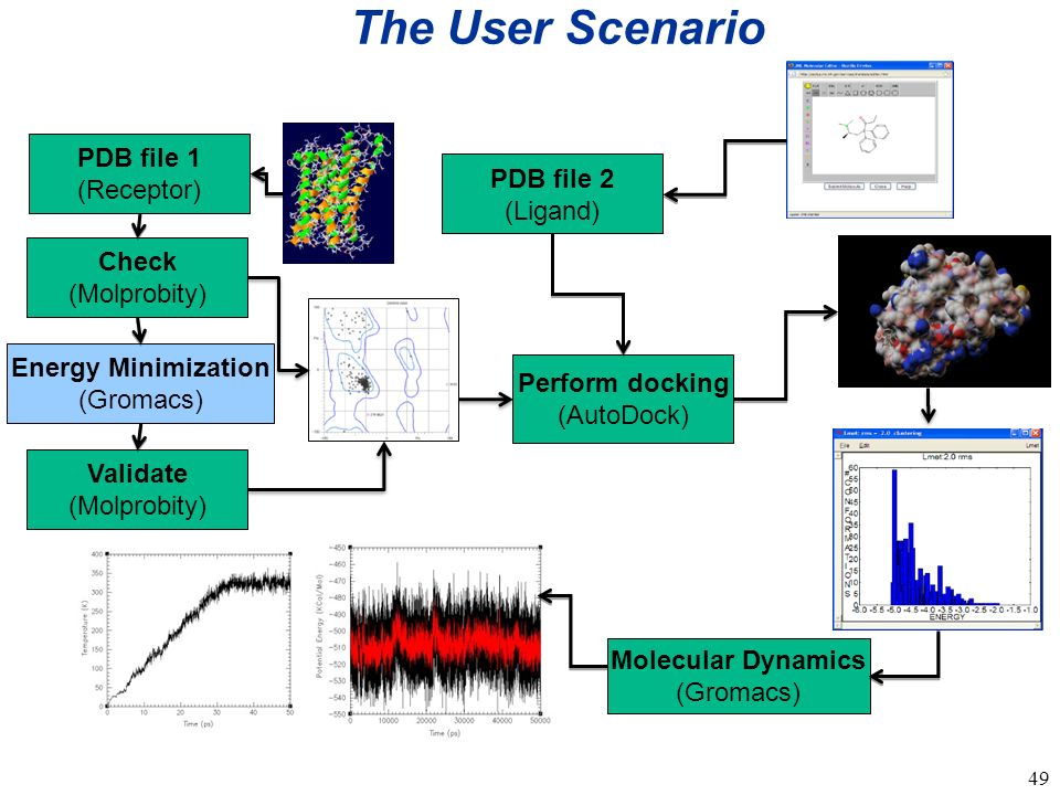 49 The User Scenario PDB file 1 (Receptor) PDB file 2 (Ligand) Energy Minimization (Gromacs) Validate (Molprobity) Check (Molprobity) Perform docking (AutoDock) Molecular Dynamics (Gromacs)