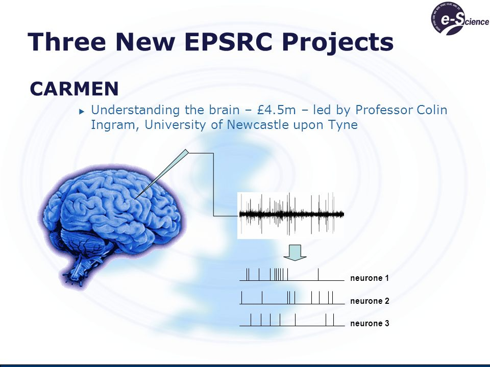 Three New EPSRC Projects CARMEN Understanding the brain – £4.5m – led by Professor Colin Ingram, University of Newcastle upon Tyne neurone 1 neurone 2 neurone 3