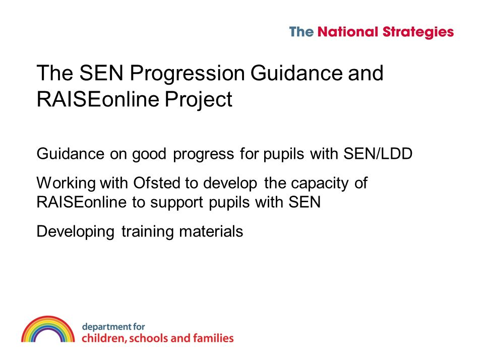 The SEN Progression Guidance and RAISEonline Project Guidance on good progress for pupils with SEN/LDD Working with Ofsted to develop the capacity of RAISEonline to support pupils with SEN Developing training materials